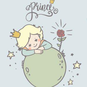 100x75 Piccolo principe chiaro