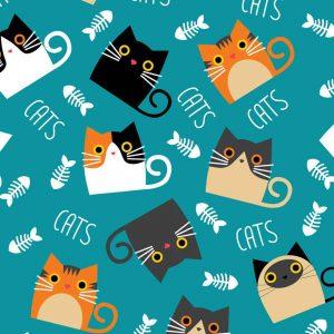 Cats fondo teal