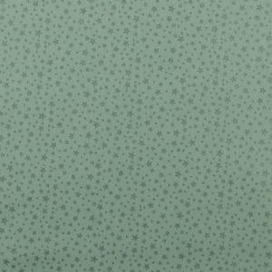 Glitter star verde menta