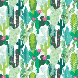 Cactus fiori