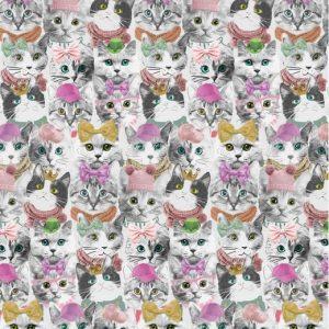 Jersey gatti