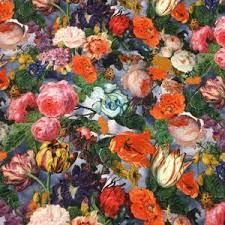 Jersey flower still life