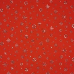 Snow silver - Natale