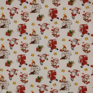 Santa Claus - Natale